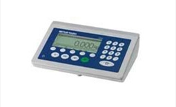 ICS4_5 Weighing Terminal